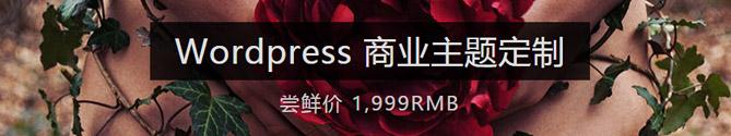 wordpress商业主题制作
