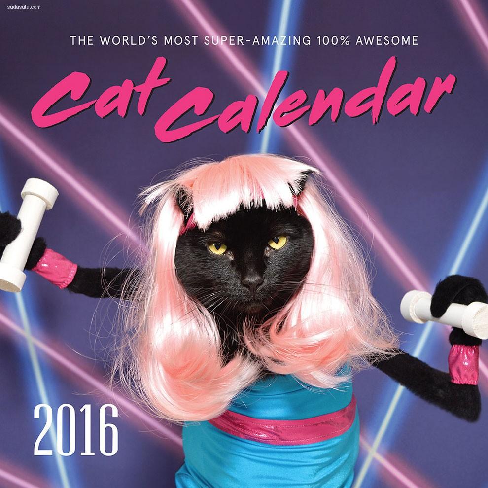 Kate Funk 和世界上最著名的明星猫