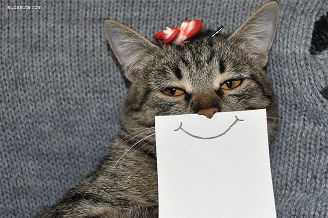 Redditor 幽默可爱的喵星人表情