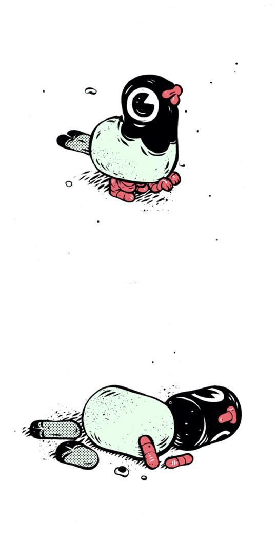 T Wei 一只鸽子的插画