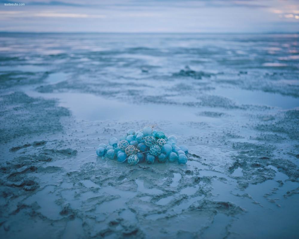 Acacia Johnson 自然摄影欣赏