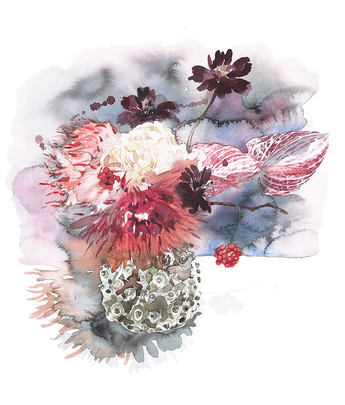 Ayako Tsuge 水彩手绘插画欣赏