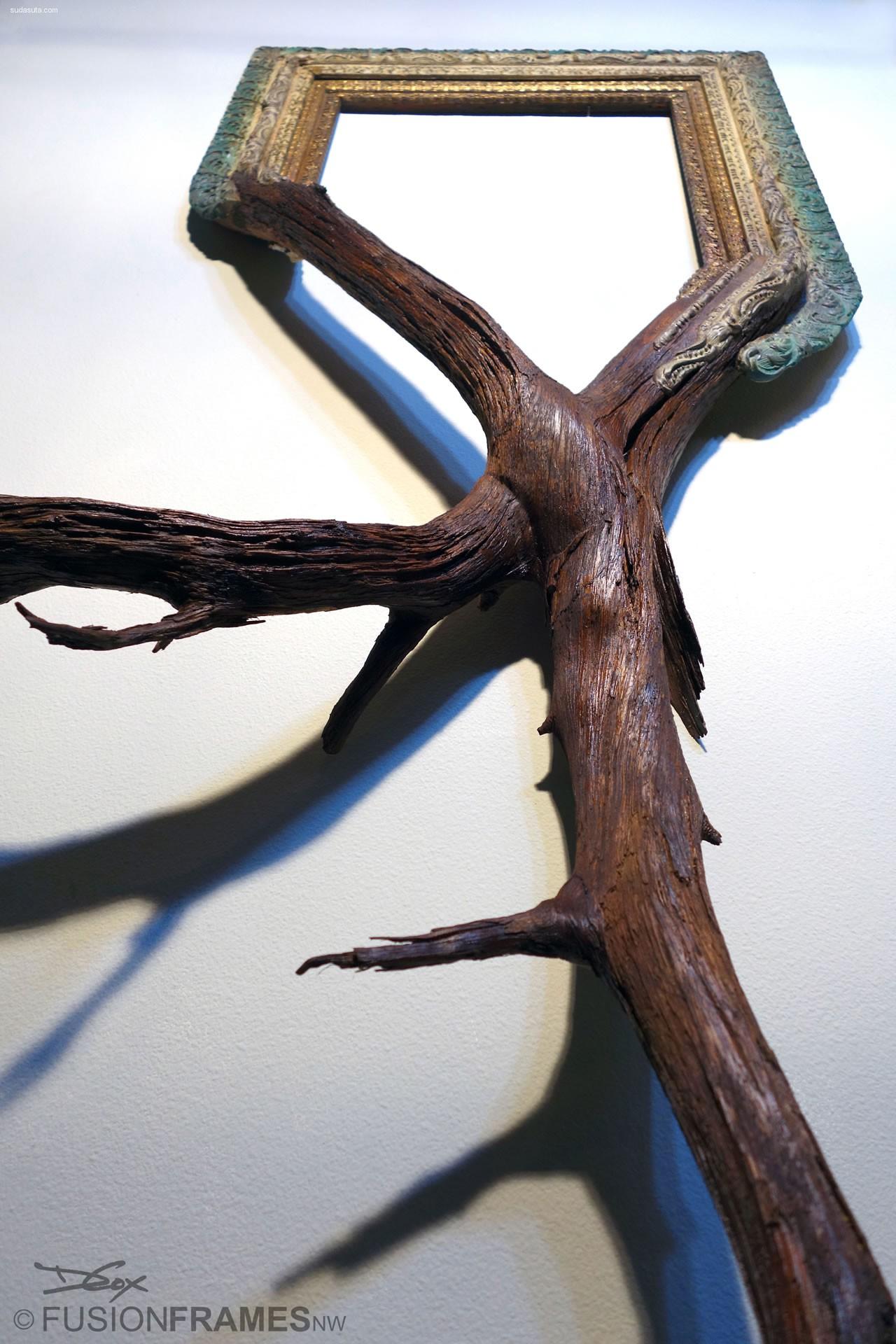 Darryl Cox 融合的植物框架