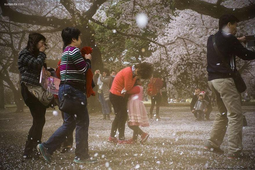 国家地理杂志 粉红樱花开