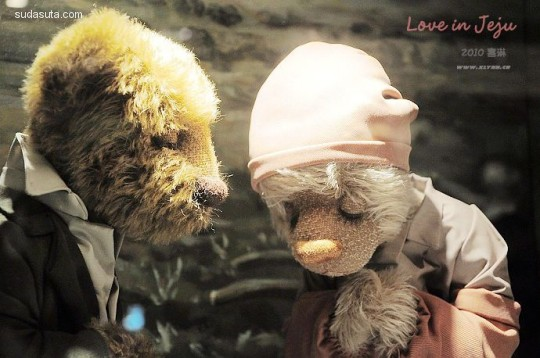 有一种爱 叫做泰迪熊