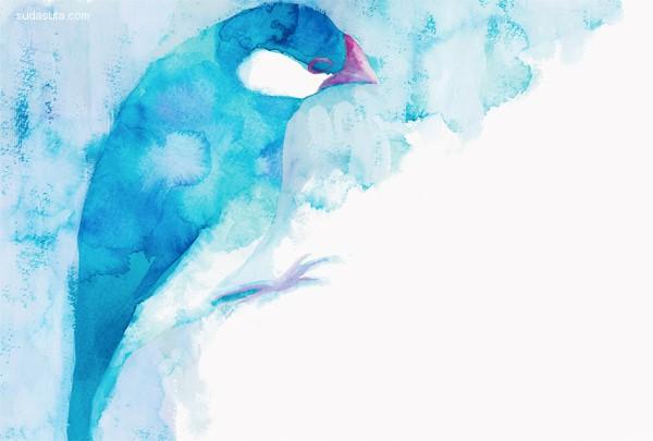 emimino 鸟