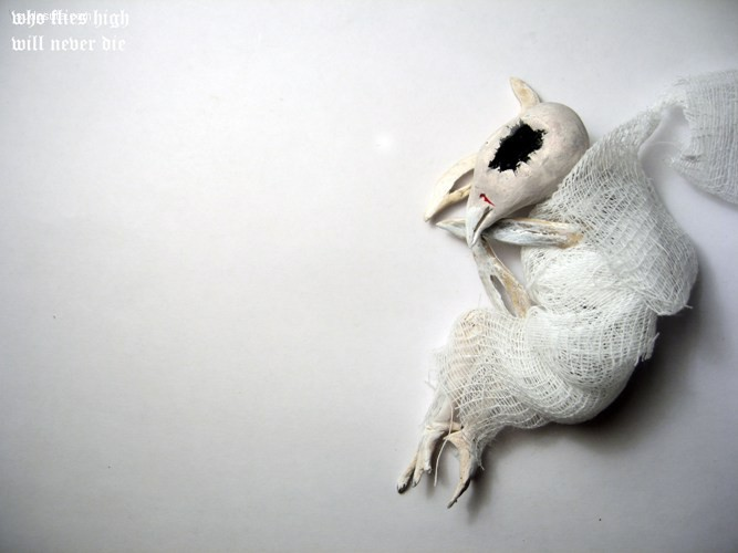 Oso Polar 未知生物研究所