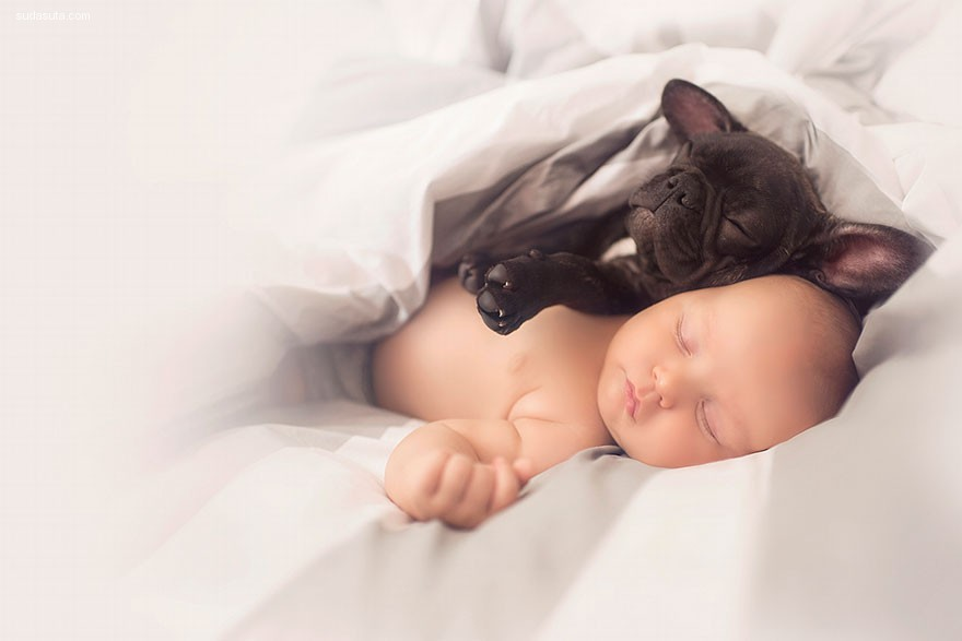 Dilan 和Farley的故事 宠物和儿童摄影欣赏