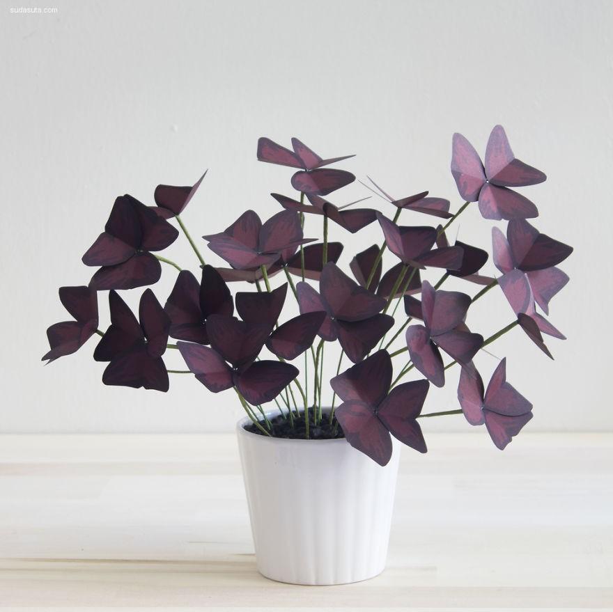 Corrie Beth Hogg 纸张的植物