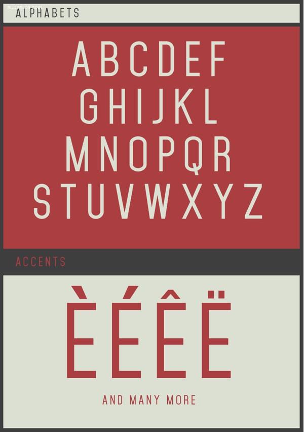 30个最新的免费的英文字体下载