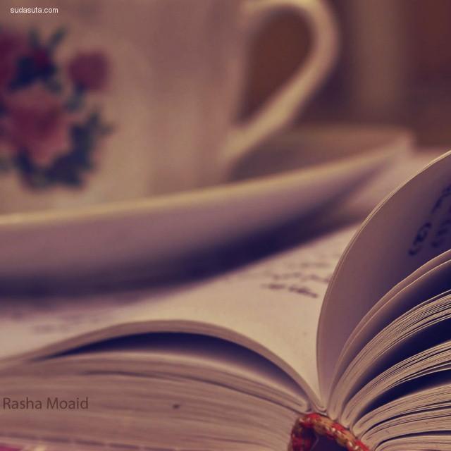 Rasha Moaid 摄影作品欣赏