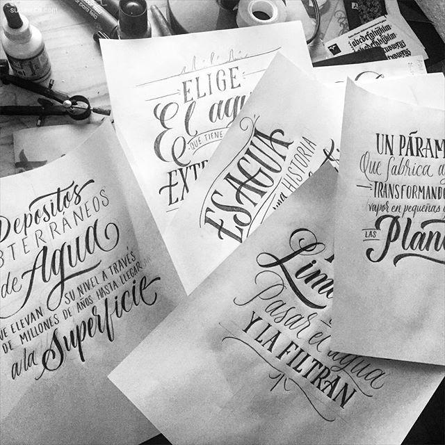 Alán Guzmán 严肃优雅的手写花体字