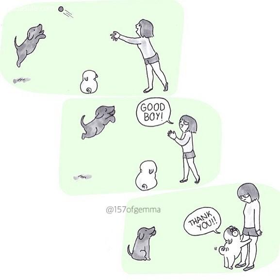 Gemma Gené 那只狗的故事