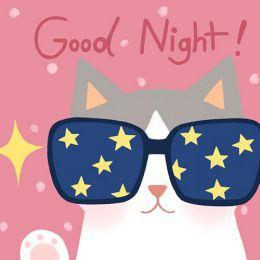 雅Miya-ya《猫的晚安》