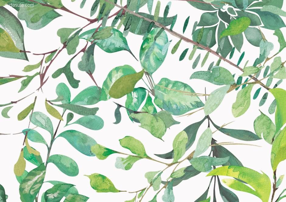Green Catch 视觉传达设计欣赏