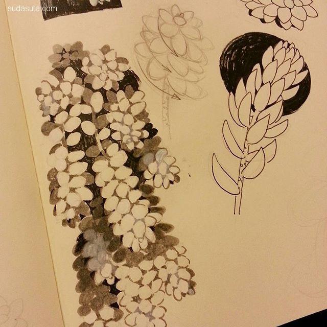 Vivian Ng 植物与少年