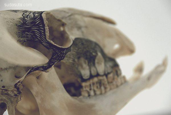 DZO Olivier 在石头和骨骼上作画