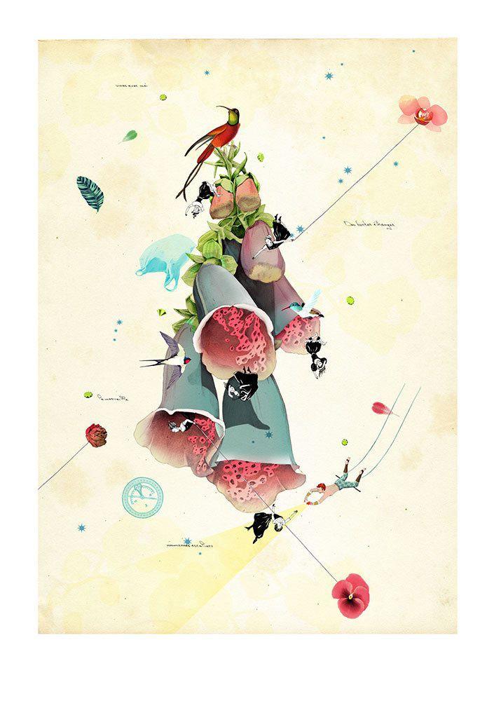 Delphine Lebourgeois 混合艺术欣赏