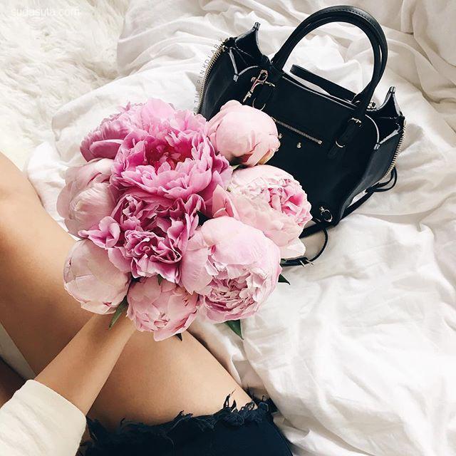 The Pink Diary 每天都是粉红色