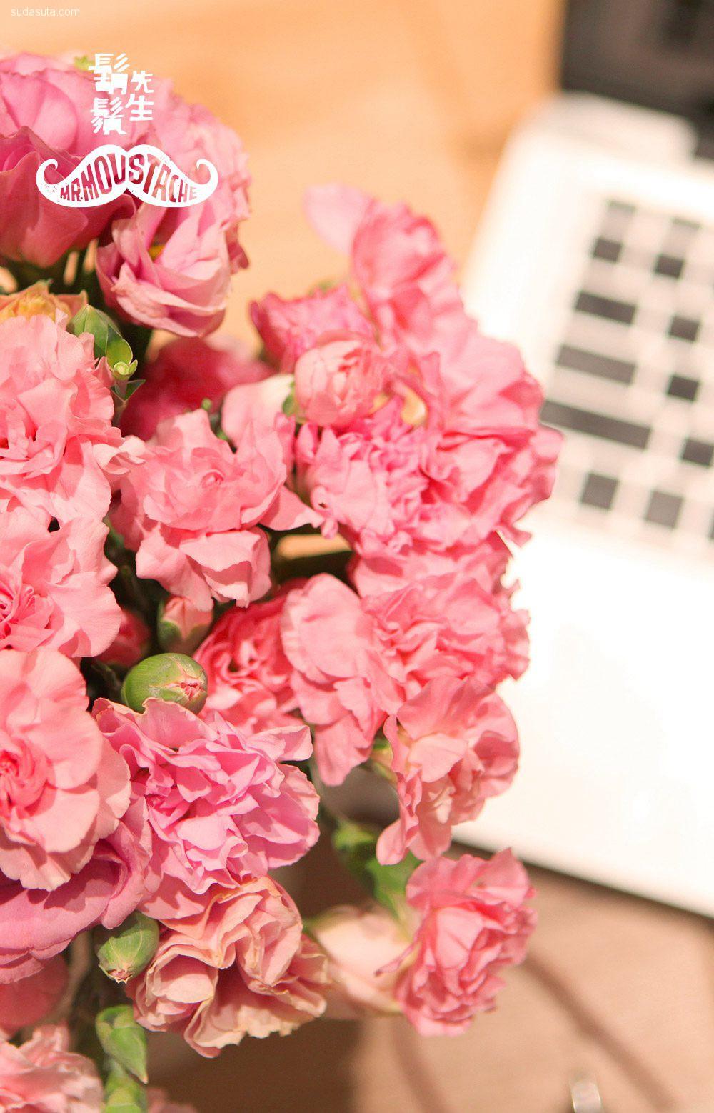 胡须先生 静待花开