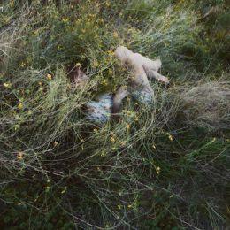 Jessica Tremp 超现实主义摄影作品欣赏