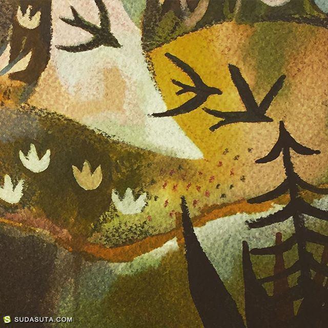 Matt Forsythe 森林绘本日记