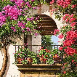 Victor Arriola 当繁花开满庭院