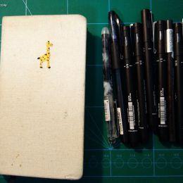 小侯lynn 的绘本日记