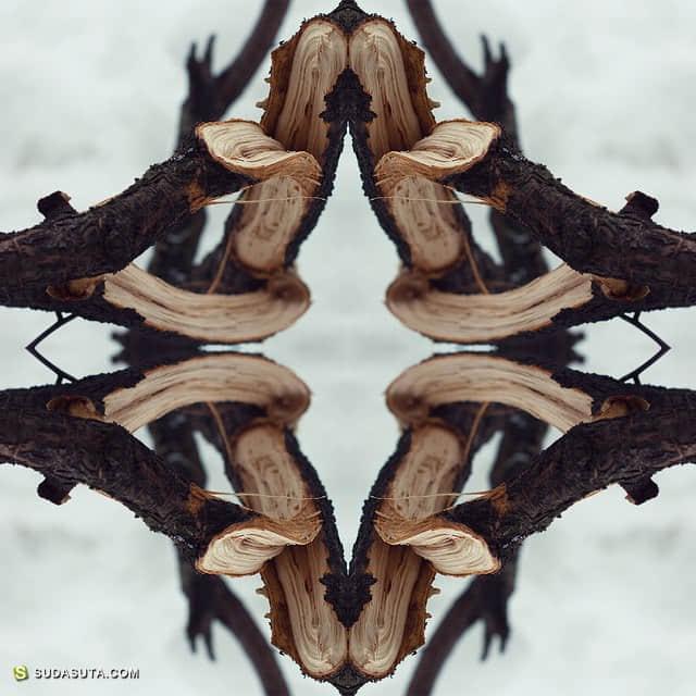 Karina Eibatova 摄影作品欣赏