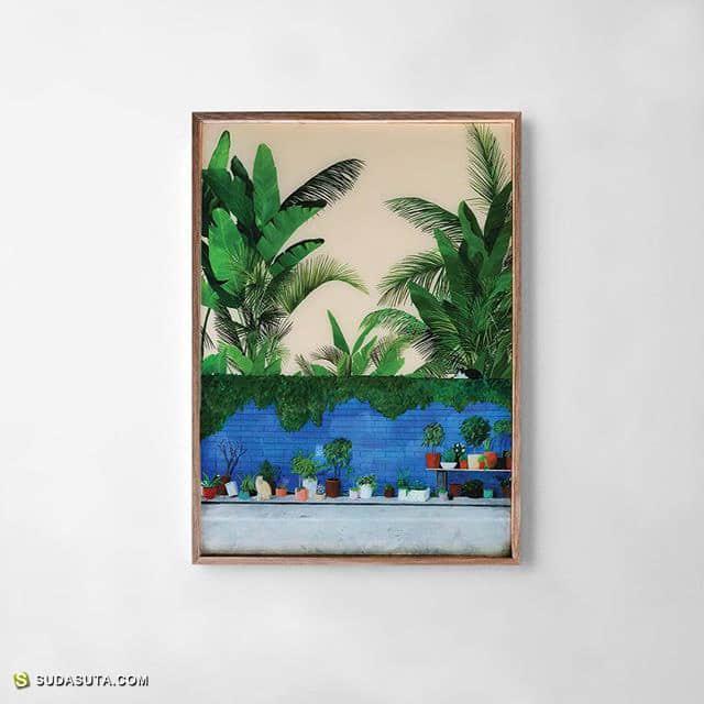 Robert Bowers 绘画植物的男人