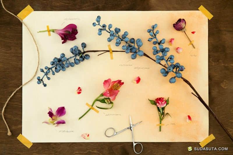 Ivan Knyazev 植物的艺术