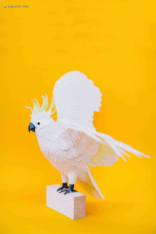 纸张艺术家 Diana Beltran Herrera 鸟与花的邮票