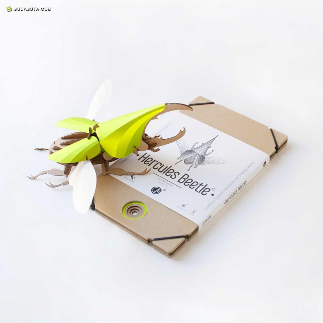 Joop Bource 有趣的纸张甲壳虫