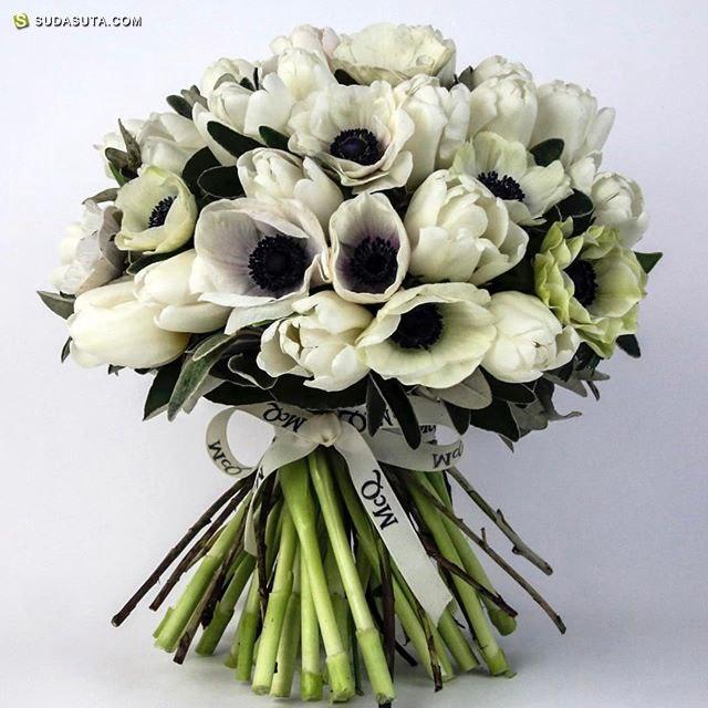 McQueens 花的花