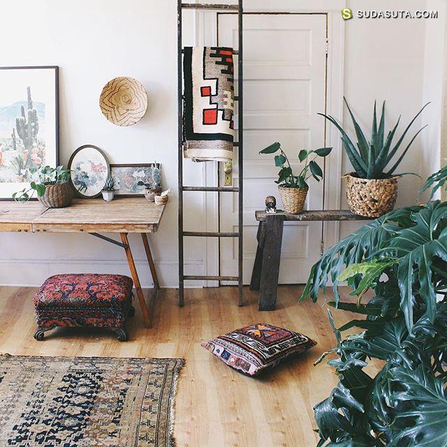 Anna Louise 植物,安静与空间