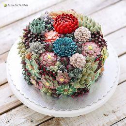 Iven Kawi  蛋糕与多肉君 美食造型设计