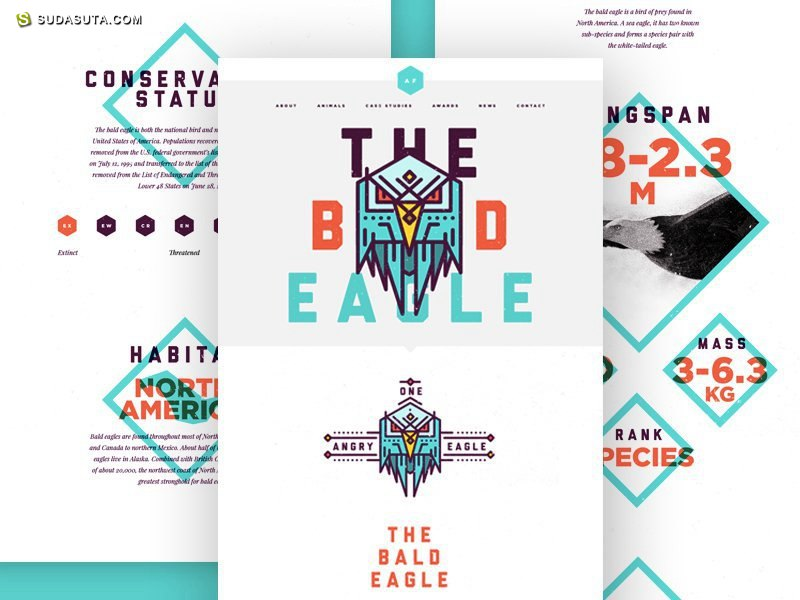 20个惊人的带有字体排版的网站概念效果图