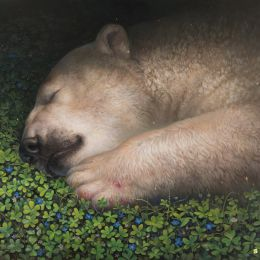 Kisung Koh 白熊的梦