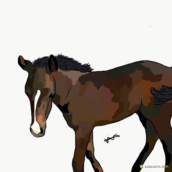 Digital Pony 马的数字插画艺术欣赏