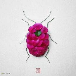 Natura Insects 花的虫子 自然拼贴艺术欣赏