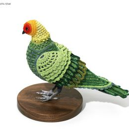 Paradise Parrot和Guadalupe Caracara 编制的鸽子