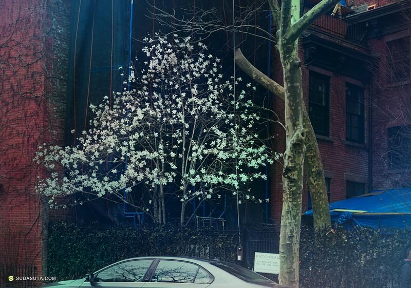 Agnieszka Doroszewicz 《停车场》数字艺术摄影欣赏