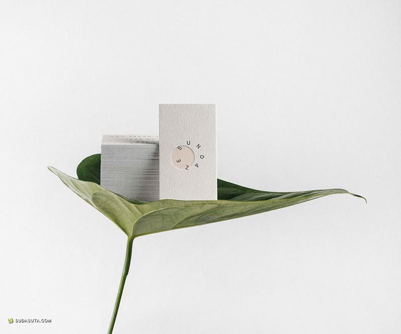 Sundaze 品牌设计欣赏