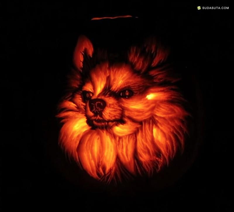 DoggieDoc 万圣节的南瓜灯