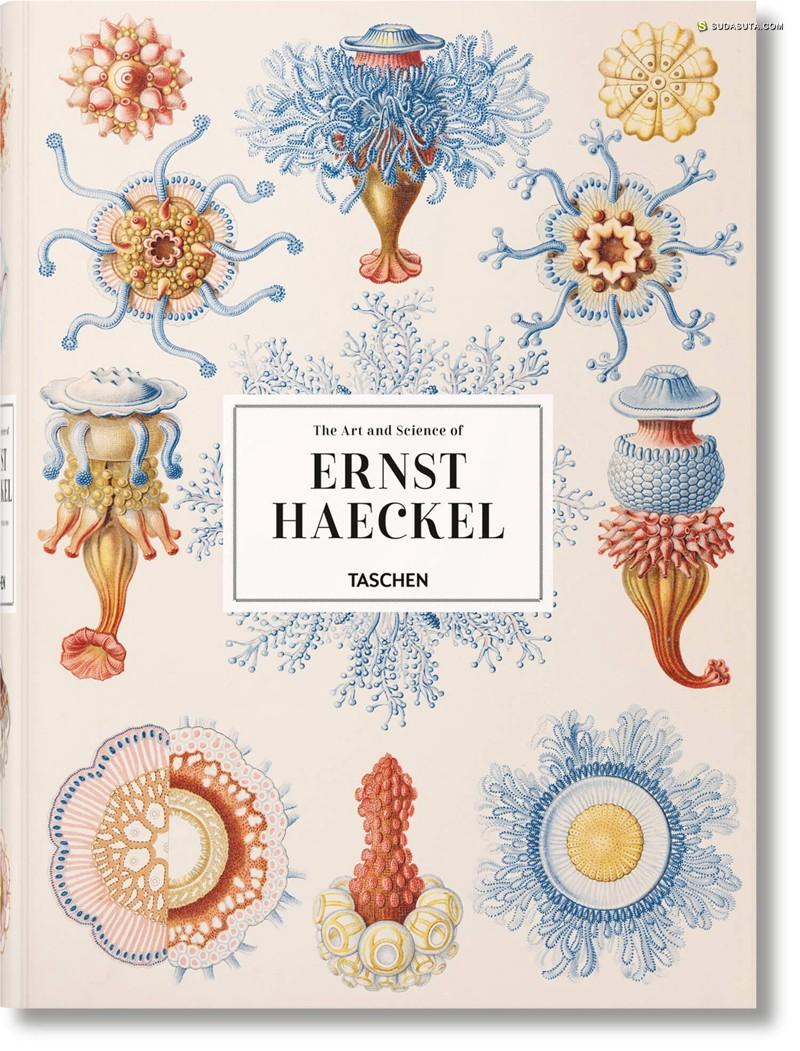 Ernst Haeckel 书籍插画欣赏