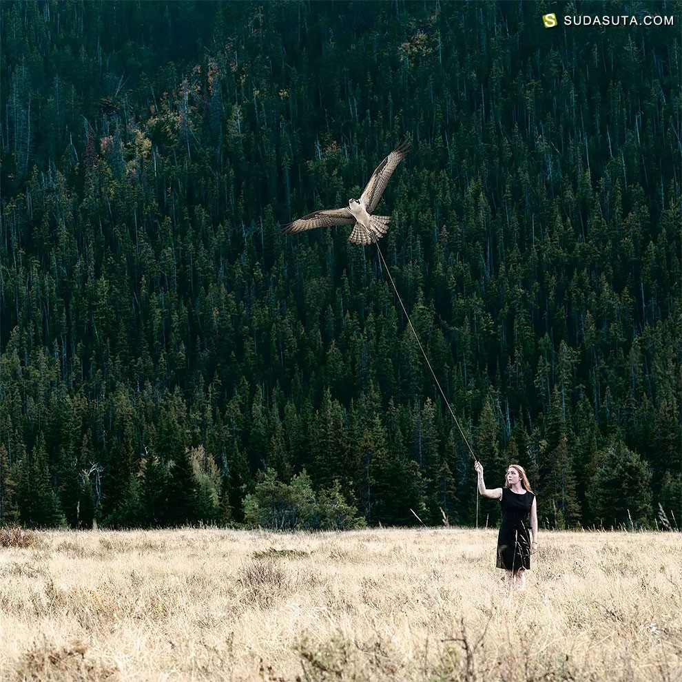 Philip Kanwischer 人与自然