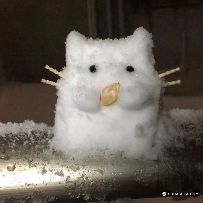 东京,白色,雪
