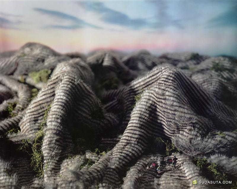 Areca Roe 微型世界