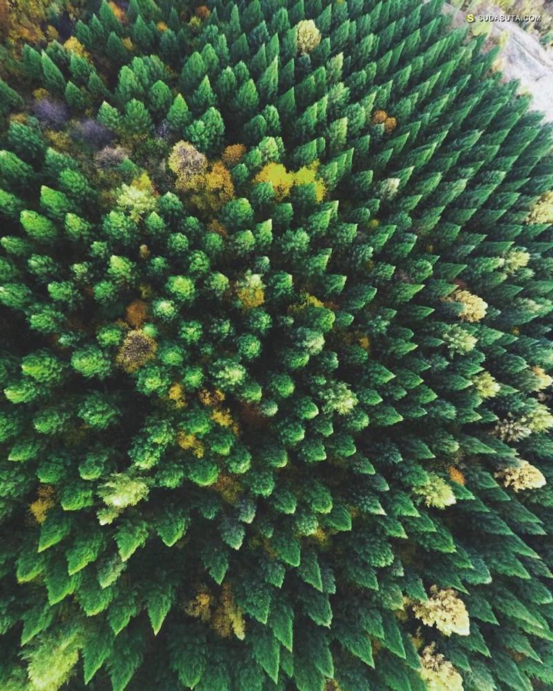 Nazarii Doroshkevych 自然摄影作品欣赏