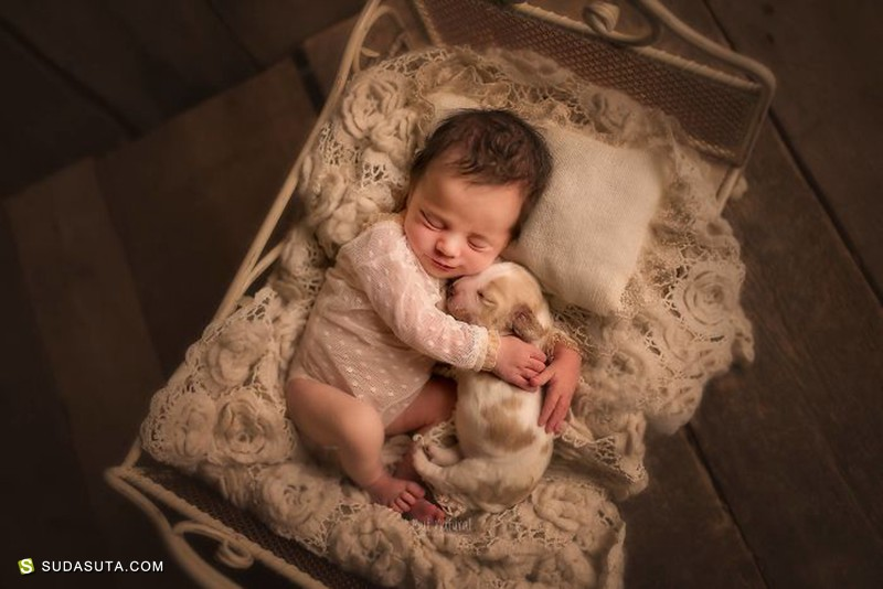 Sujata Setia 宠物与儿童摄影欣赏